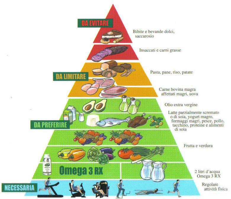 """La """"Zona"""": ovvero come l'alimentazione passa dalle calorie agli ormoni"""